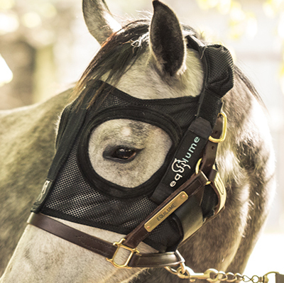 Equilume_Best Reproduction Device
