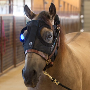 Equilume_Mask Fitting Step 3