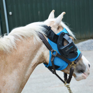 Blue Pony Mask